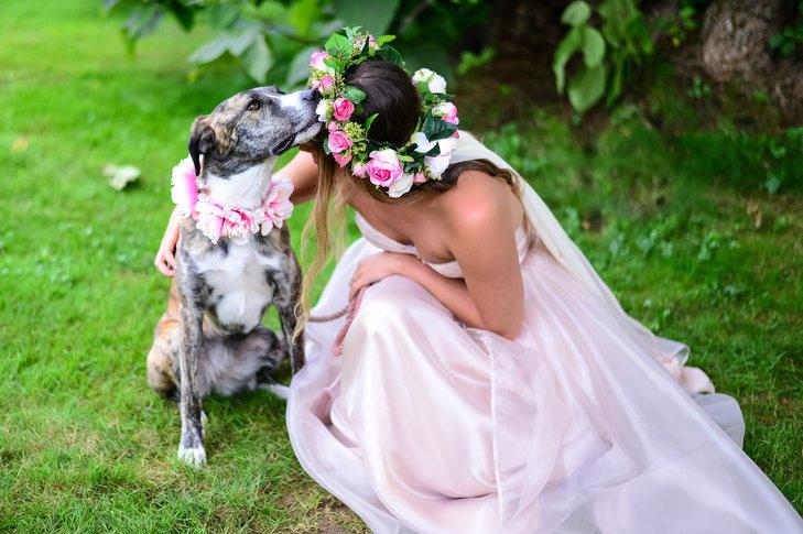 Il tuo cane al matrimonio? Si ma solo seguendo alcune regole!