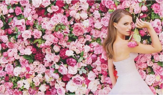 pink-roses-wedding-backdrop