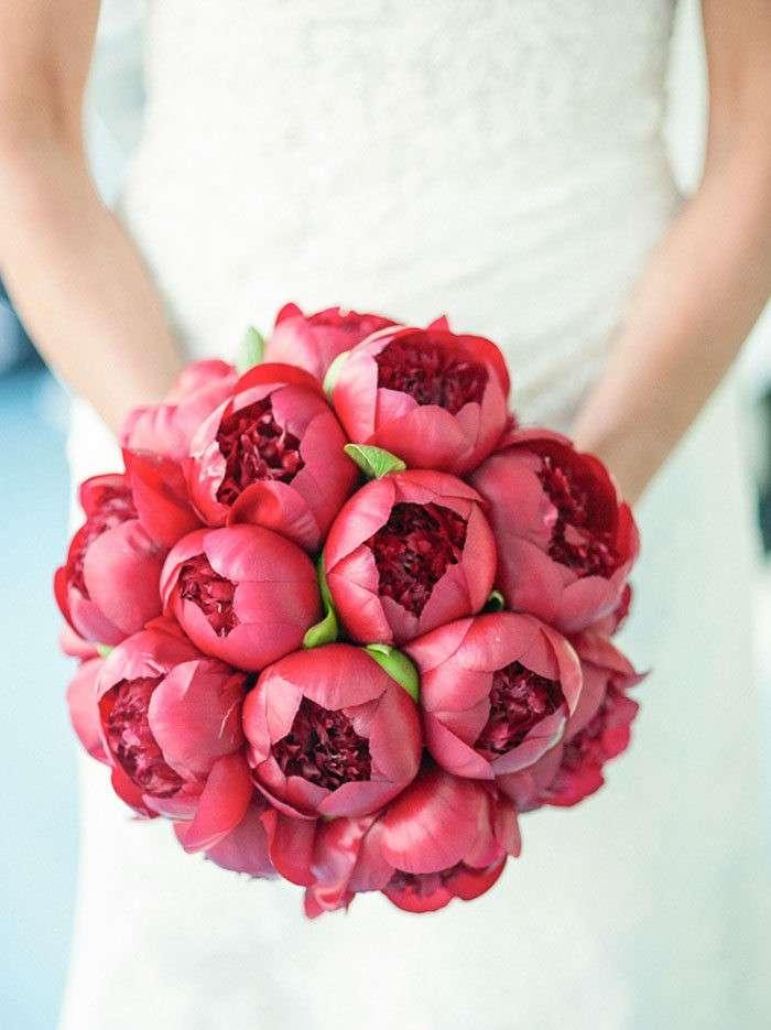 peonie-rosse-rosate
